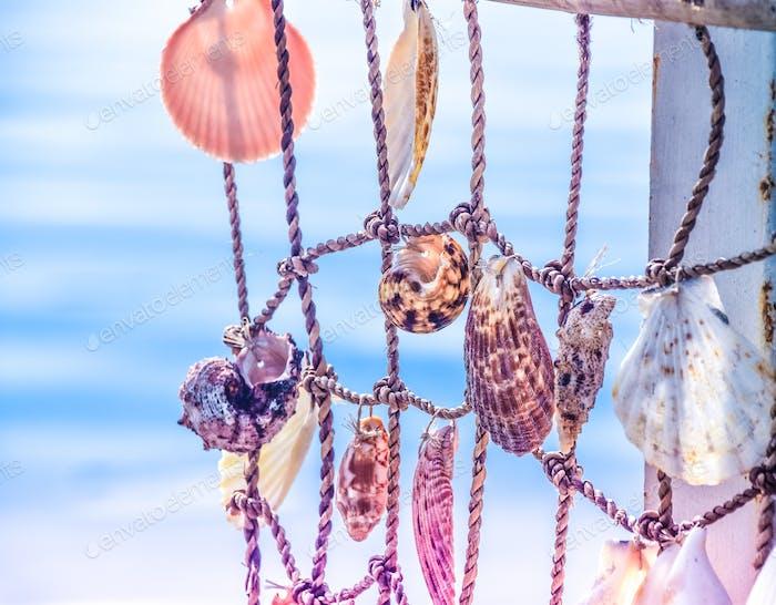 Sommer-Erinnerungen Pastell Muscheln