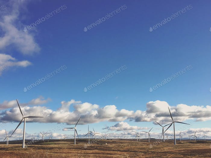 Windfarm with renewable energy generation on open moot with blue sky and some fluffy clouds.