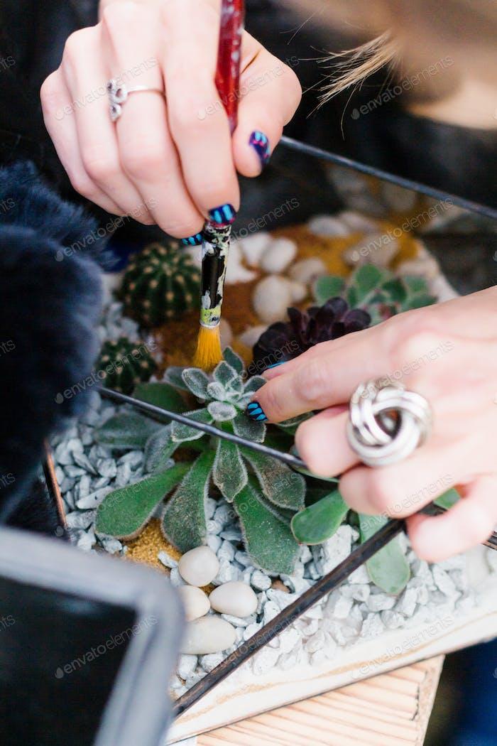 Crafting, plant hobby