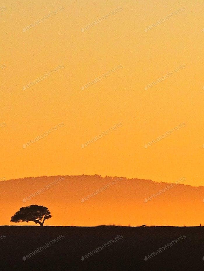 Carmel Valley (Laurel's Grade) Sunset