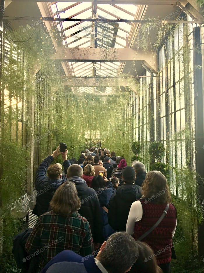 Tourists walking through a tunnel of dangling green fern and holiday lights -  Longwood Gardens  Nev