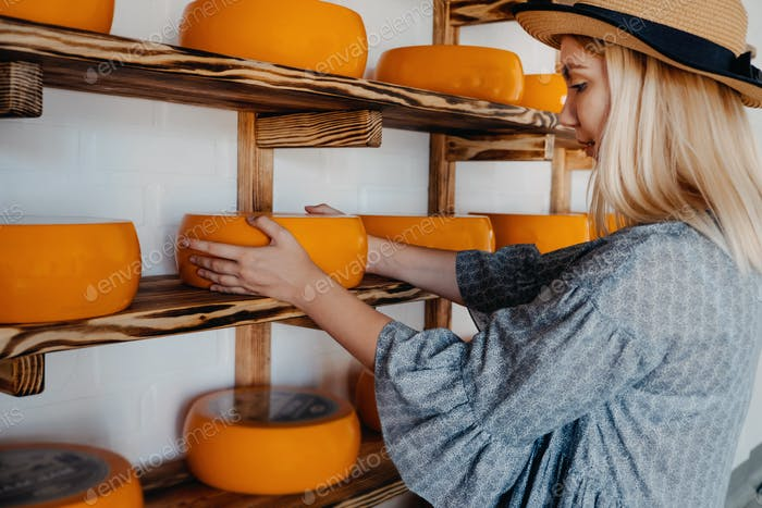 Goat Cheese Wheel in female hands on rack in factory warehouse. Several mature cheese heads