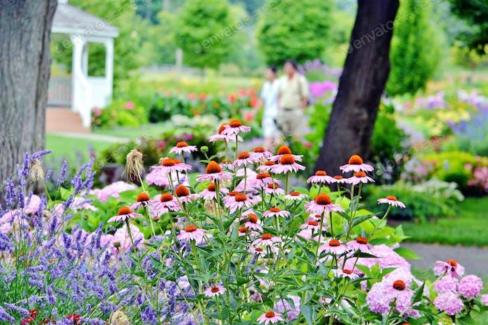 Flower garden on Windmill Island! #flowersphotography #flowersphoto #flowerstalking #flowerday