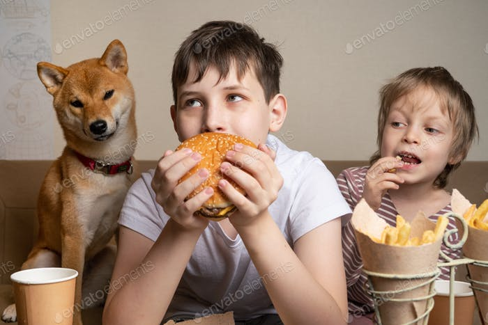 Two cute brothers and funny shiba inu dog eating junky food in front of TV
