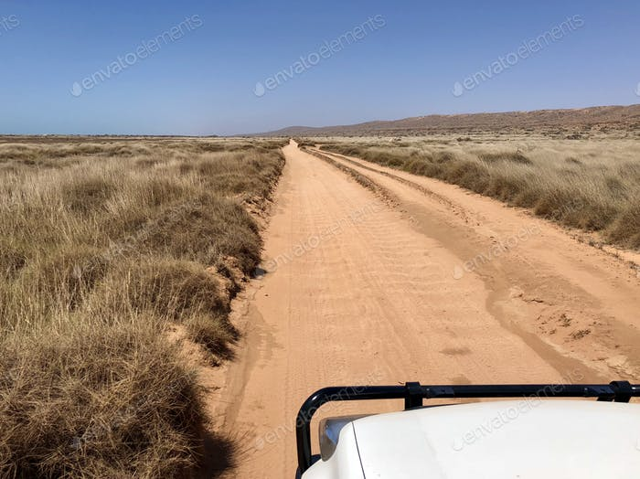View from the 4WD of a dirt road in the Bush during a summer road trip in Australia