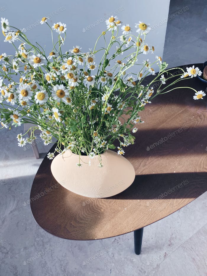 Sunlight casting a shadow on the living room with chamomile flowers in vase