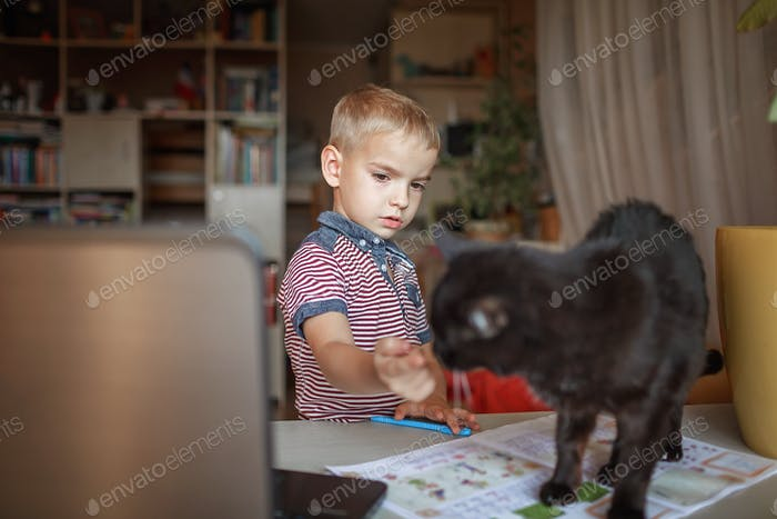 Distant education, true online education. Schoolchild studying with cat during lesson at home