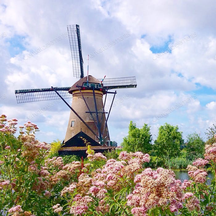 Windmühle in Holland