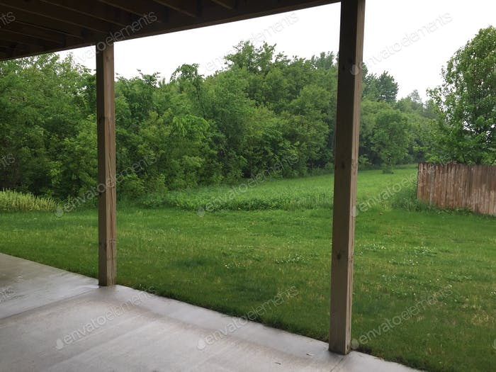 Backyard in Wisconsin