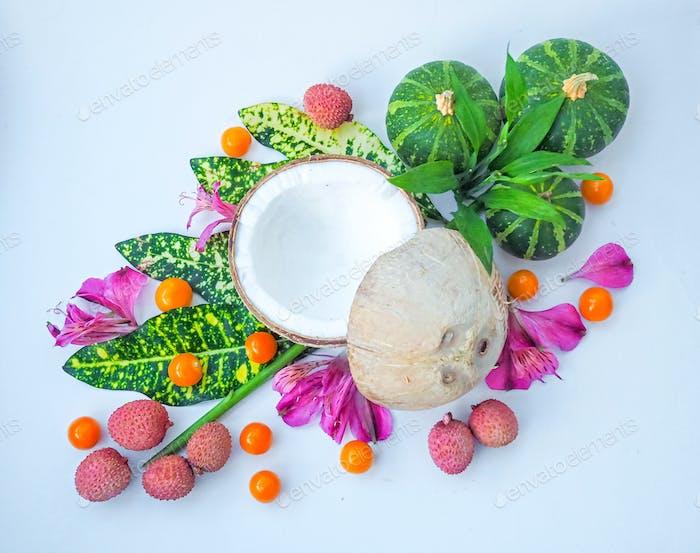Kokosnuss und andere exotische Früchte, Blätter, Blütenblätter auf weißem Hintergrund
