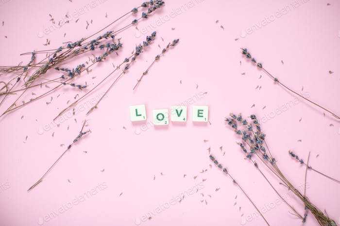 Love lettering with lavender on a pink backround