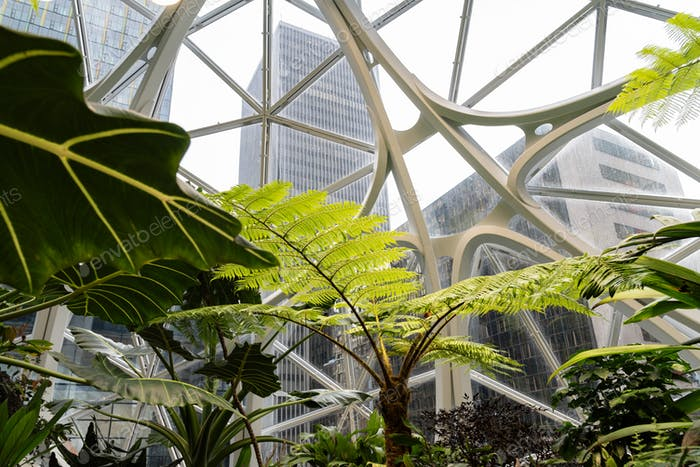 Lush foliage under glass dome roof