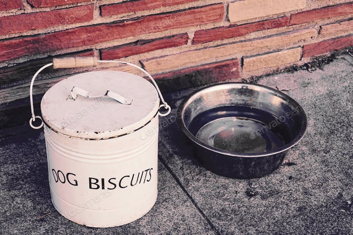 Dog biscuits and dog bowl full of water in front of a small business