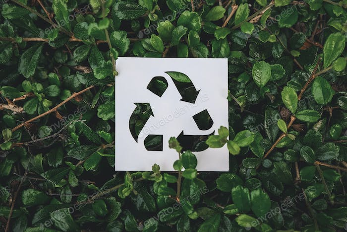 Recycle symbol created with paper cut on green leaves background