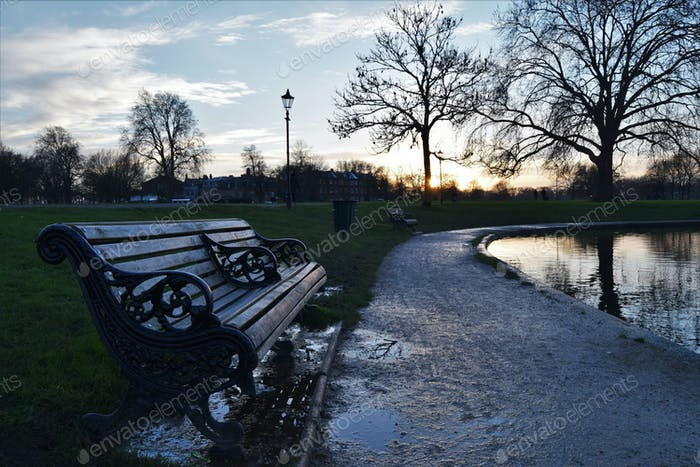 Wintry sunset in the park